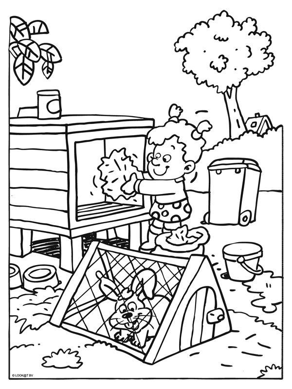 Konijnenhok Foto Kleurplaat 1000 Images About Dieren On Pinterest Free Printable