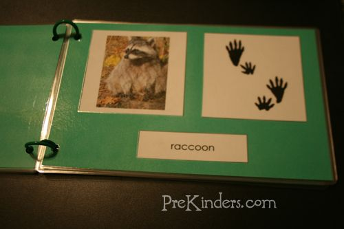 Animal tracks books and tons of other great printables at www.montessoriforeveryone.com