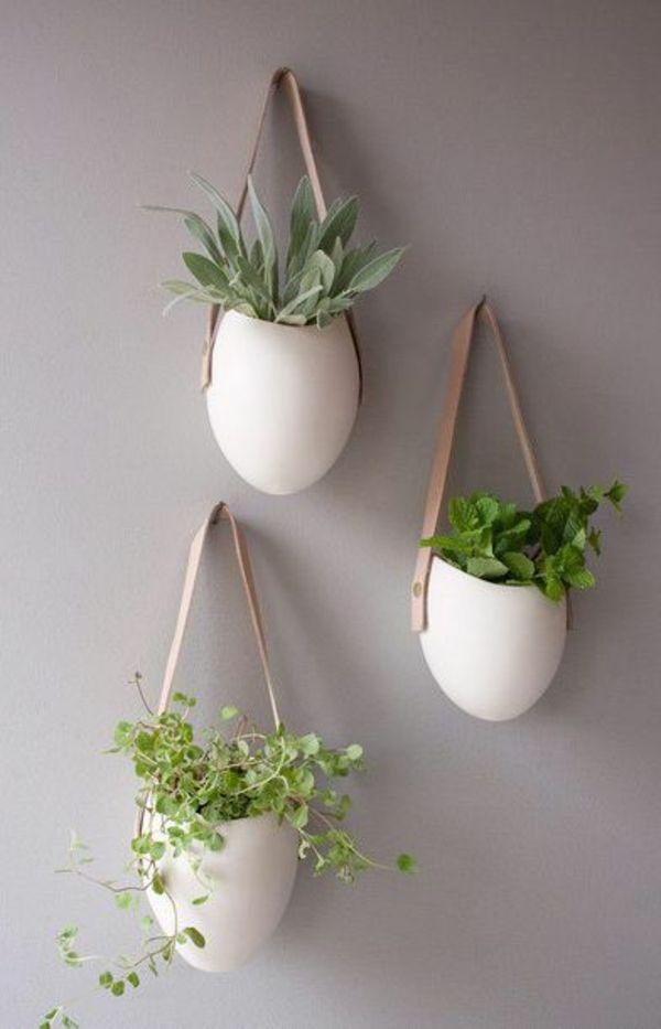 Hängende Zimmerpflanzen und Balkonpflanzen – umweltgerechtes Haus – Susan Körner
