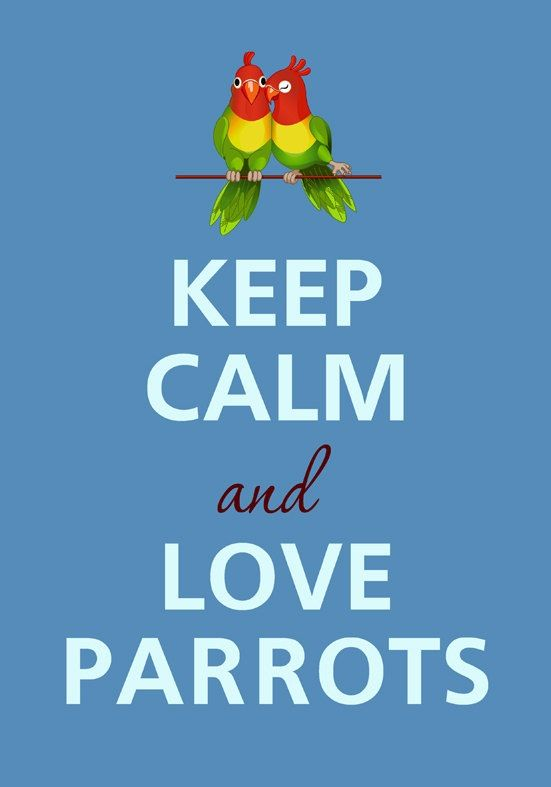 Keep Calm And Love Birds