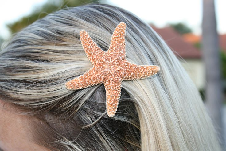 Small Sugar Starfish Hair Clip Barrette Spring by SkyDesignsUSA, $12.50Pink Summer, Bridesmaid Hair, Mermaid Hair, Summer Hair, Beach Theme, Beach Hair, Beach Wedding, Hairclips, Starfish Hair Clips