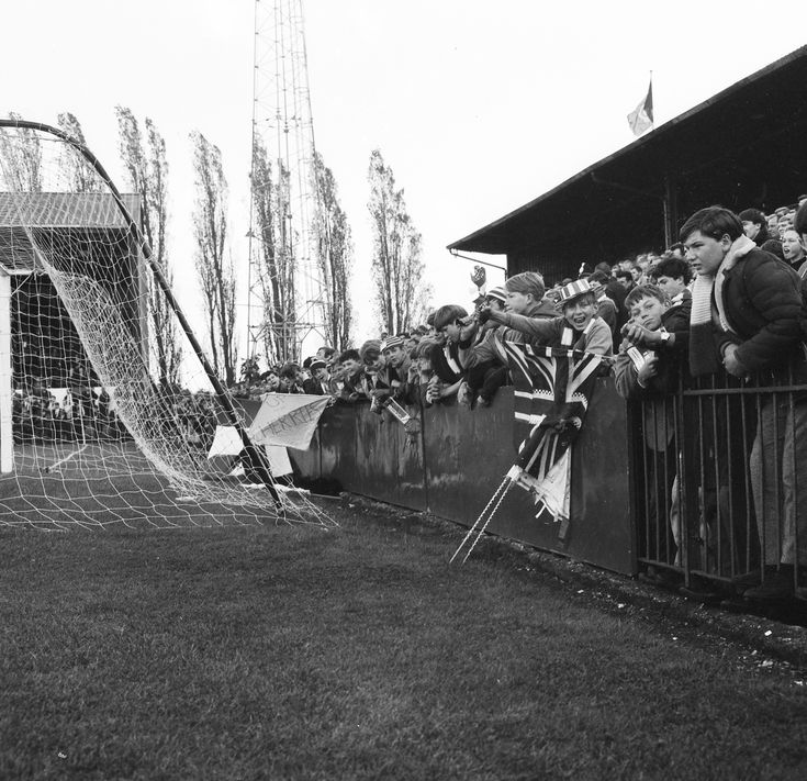 afc bournemouth | AFC Bournemouth Photographic Book - gallery - from Bournemouth Echo