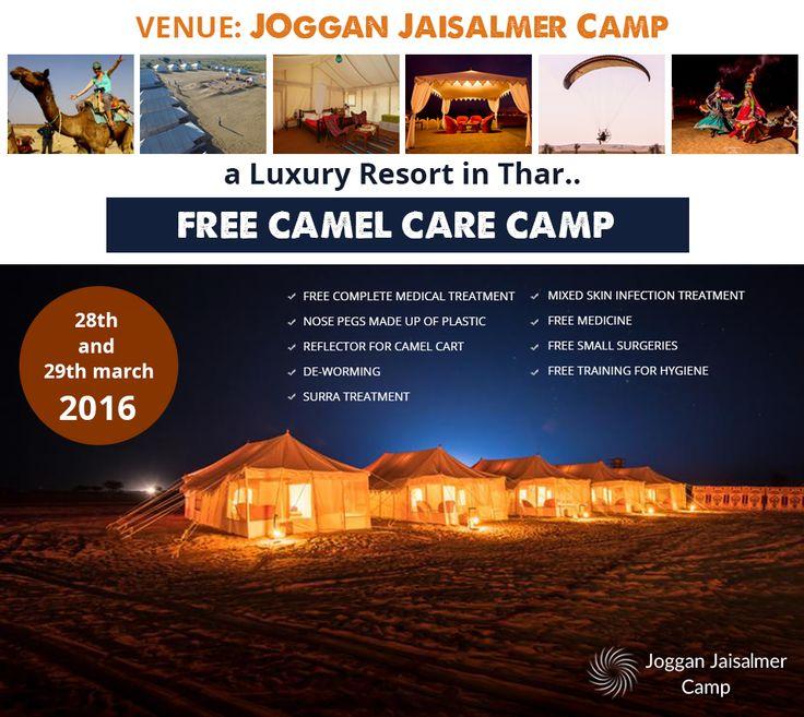 FREE CAMEL CARE CAMP at Joggan Jaisalmer Camps, Jaisalmer on 28th March & 29th March, 2016 #CamelCare | #CamelCamp | #CamelCareCamp | #Jaisalmer
