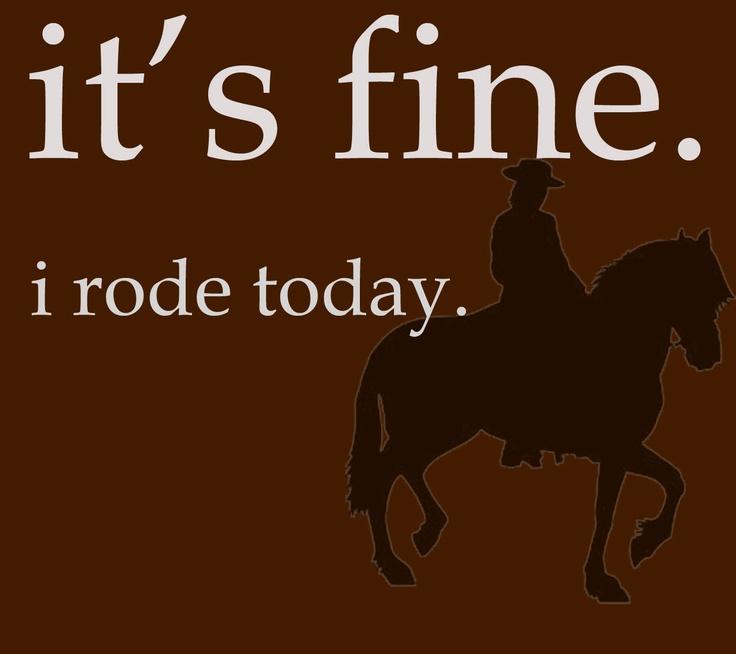 Lyric allele stitches lyrics : 7 best Chestnut Horses images on Pinterest | Equestrian, Chicken ...
