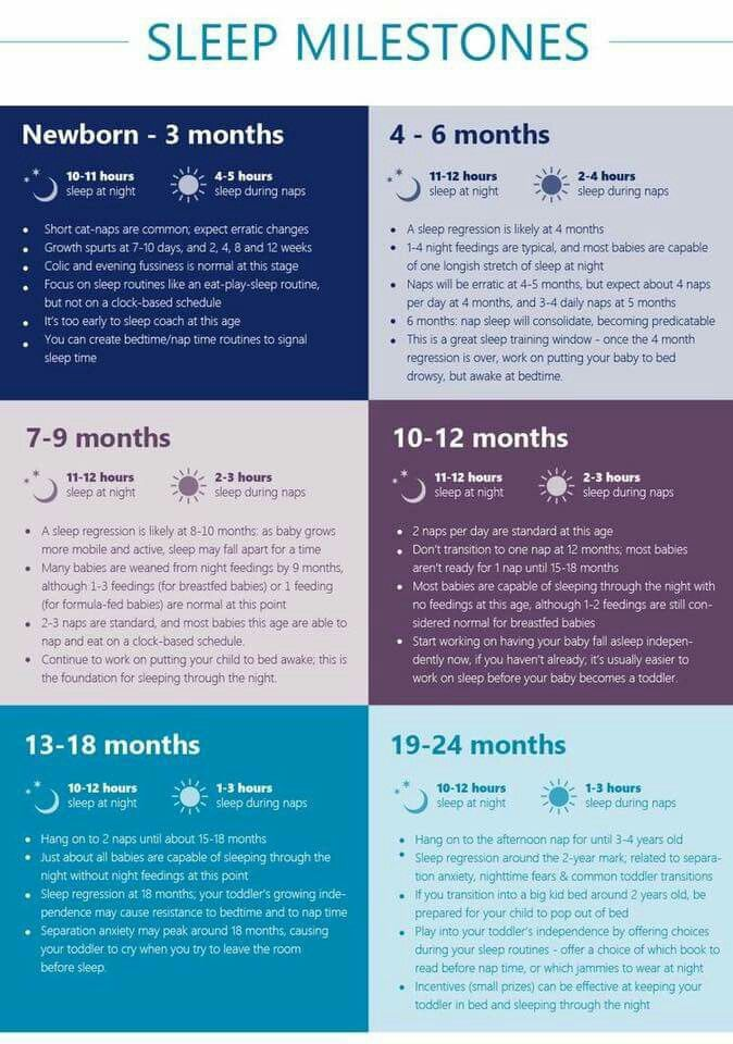 dating milestones 6 months