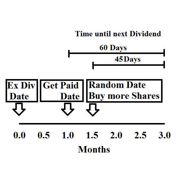 Should you DRIP invest your Dividends