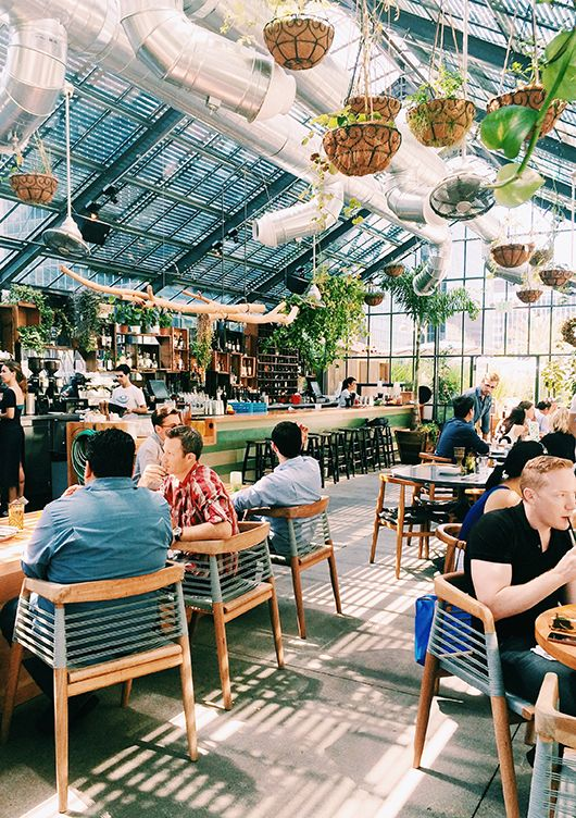 the commisasry restaurant in Korea town — the commissary restaurant atop the line hotel in korea town. it looks like you're dining in a giant green house,