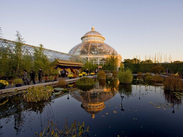 59 best guide to student discounts images on pinterest - Bronx botanical garden free admission ...