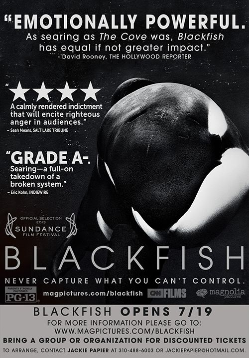 Blackfish (2013) | a documentary film directed by Gabriela Cowperthwaite that follows Tilikum and the dangers of keeping orca in captivity. It is a heartbreaking and eye-opening film that everyone should see.