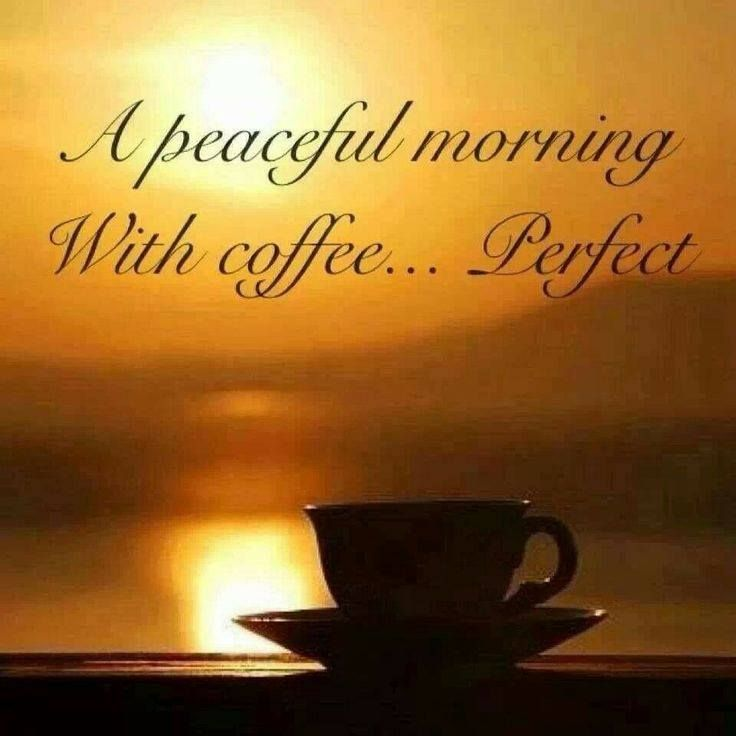A peaceful morning with coffee... Perfect.