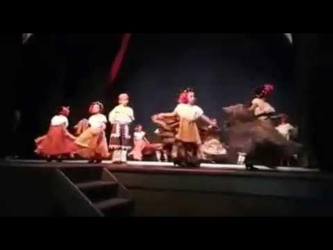 Ballet Folklorico Xochipitzahuatl de Xalapa Veracruz - BAILES DE CHIAPAS - YouTube