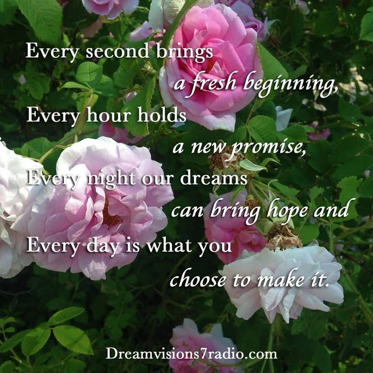 Every Second brings a fresh beginning, Every hour holds a new promise, Every night our dreams can bring hope, Every day is what you choose to make of it...