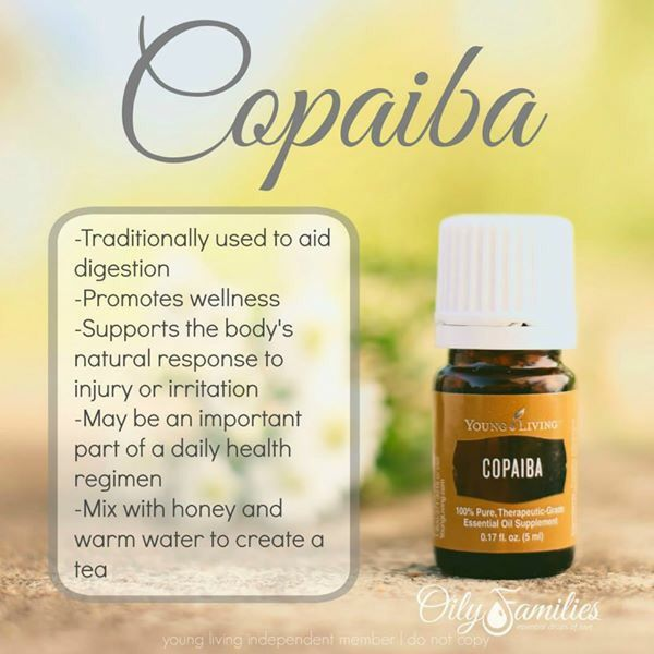 Copaiba Essential Oil Copaiba Essential Oil What Are