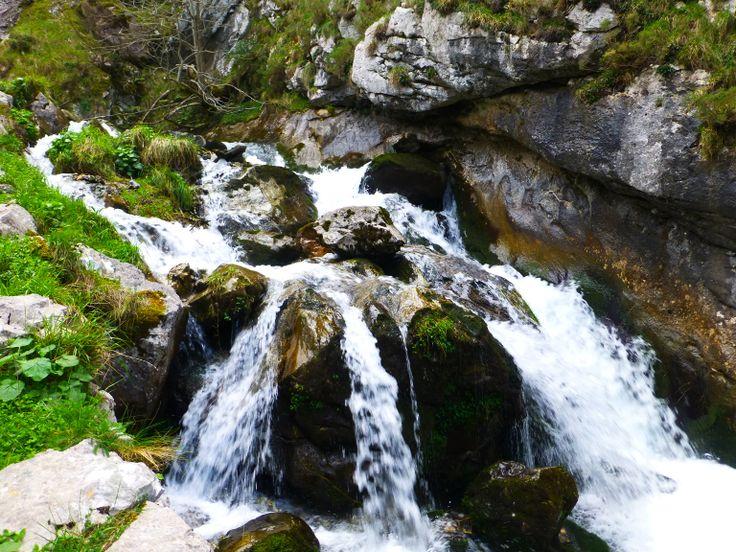 Foces de El  Río Pino, una ruta de fácil camino y de belleza espectacular, declarado Monumento Natural se comienza en el pueblo de El Pino municipio de Aller Asturias, España