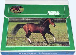 I love horses, so this definitely was my Trapper Keeper. Every year. :)