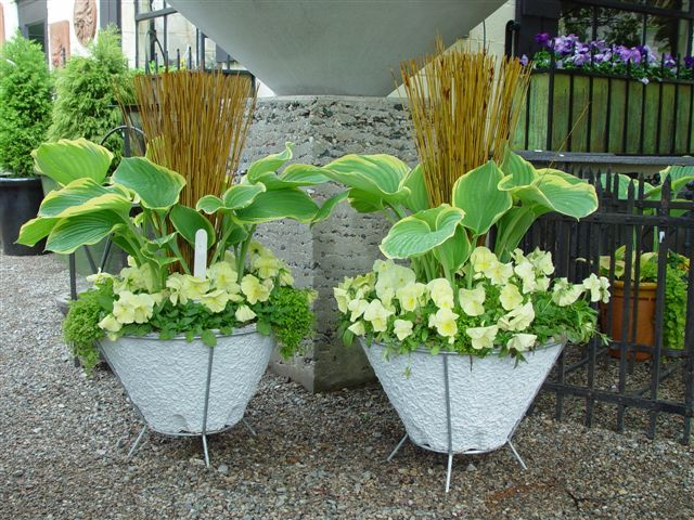 container gardening ideas by growcoach 697 gardening ideas to discover on pinterest container gardening planters and elephant ears - Container Garden Design Ideas