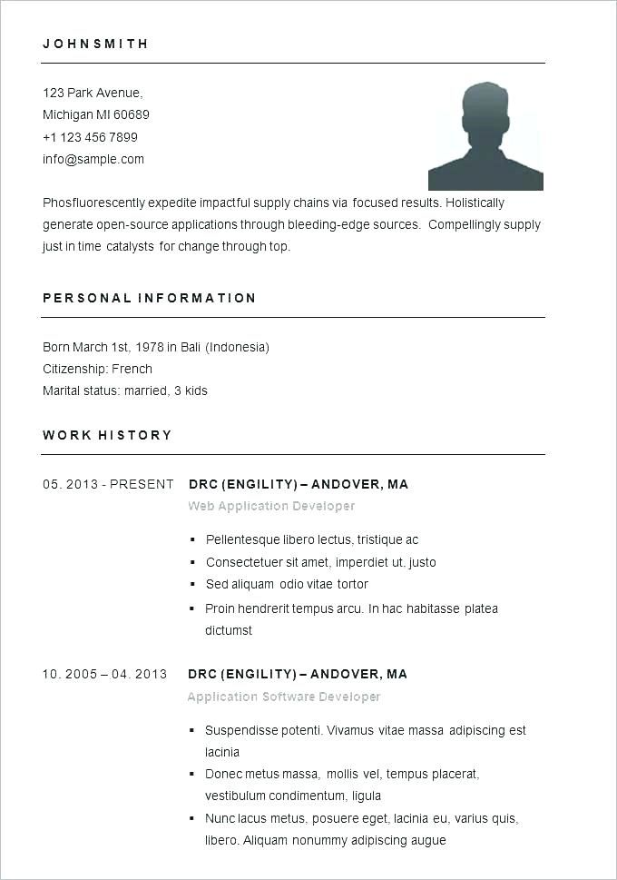 Best Simple Resume Best Resume Templates Word Resume Layout Template Best 5 Free Professional S Resume Examples Simple Resume Template Resume Template Examples