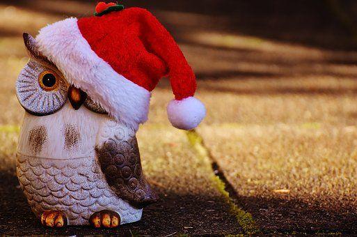 Kerstmis, Uil, Kerstman Hoed