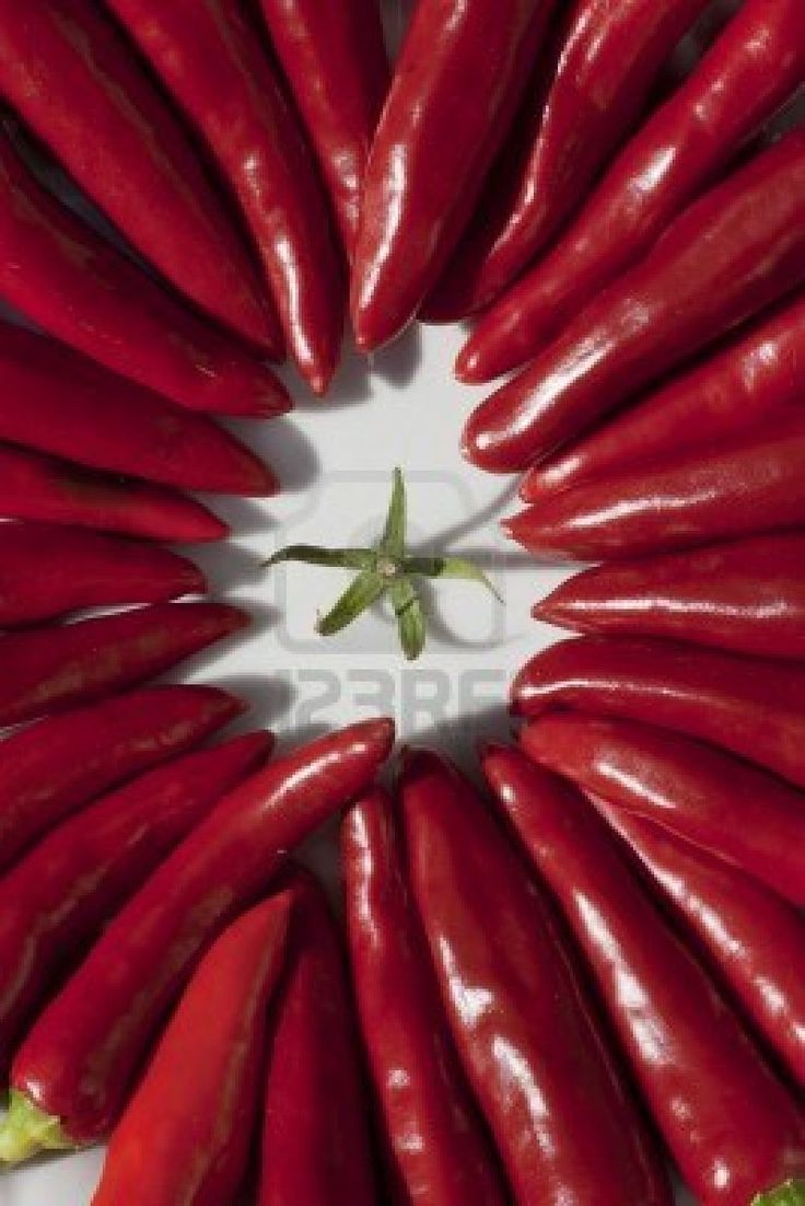 rode chili pepers, radiale compositie over wit Stockfoto - 10989219 Centraalcompoisitie
