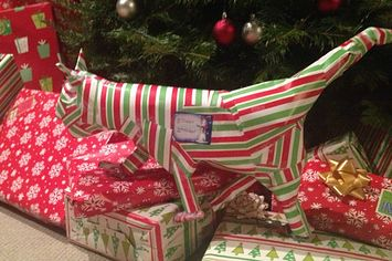 21%20People%20Who%20Got%20Creative%20With%20Their%20Gift%20Wrapping