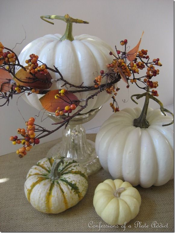 Pumpkins with a touch of fall
