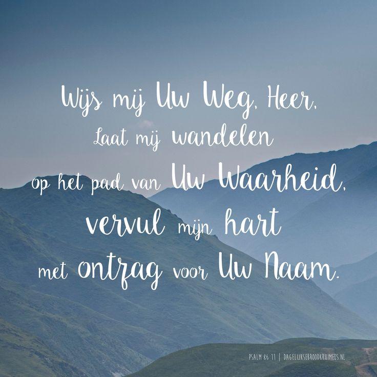 Wijs mij Uw Weg, Heer, Laat mij wandelen op het pad van Uw Waarheid, vervul mijn hart met ontzag voor Uw Naam. Psalm 86:11