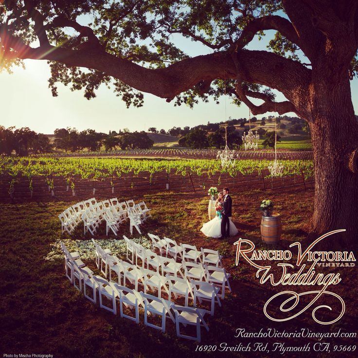 Your dream wedding here at Rancho Victoria Vineyard , create the memory you will forever look back on and be amazed