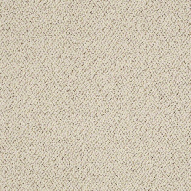 48 Best Images About Broadloom Carpet Amp Rugs On Pinterest