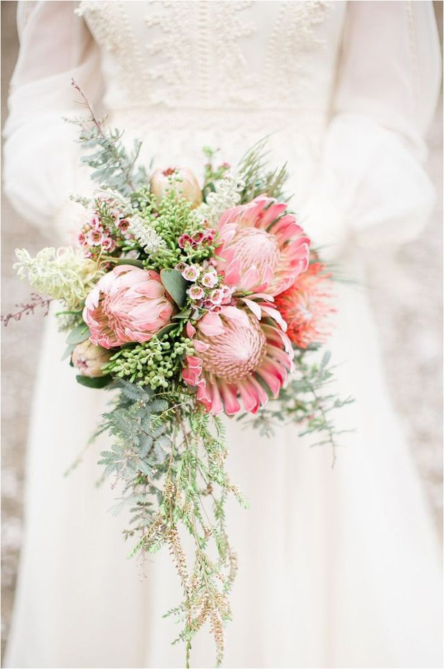 Cascade style bride's protea bouquet, all flowers California grown, from Resendiz Bros. Protea Growers. As seen in Mon Cheri Bridals- Trending: 24 Romantic cascading Bridal Bouquets #protea