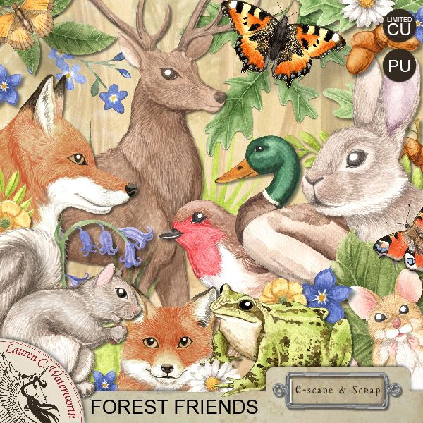 LOVE these hand painted items -   Forest Friends By Lauren C. Waterworth