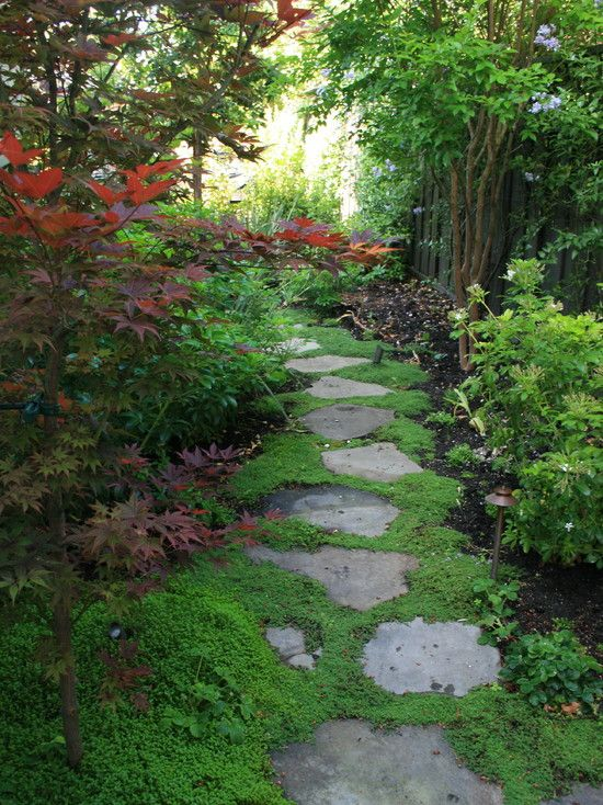 Wants to walk down this path.. Shade Gardens Design, Pictures, Remodel, Decor and Ideas - page 5