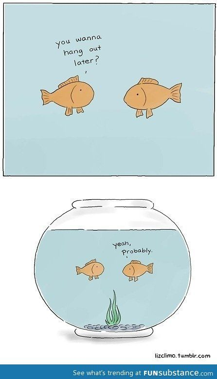 f2f3052a019119157836de32dde5e810 fishbowl so funny 9 best my gloomy day! images on pinterest sad, dark side and pets