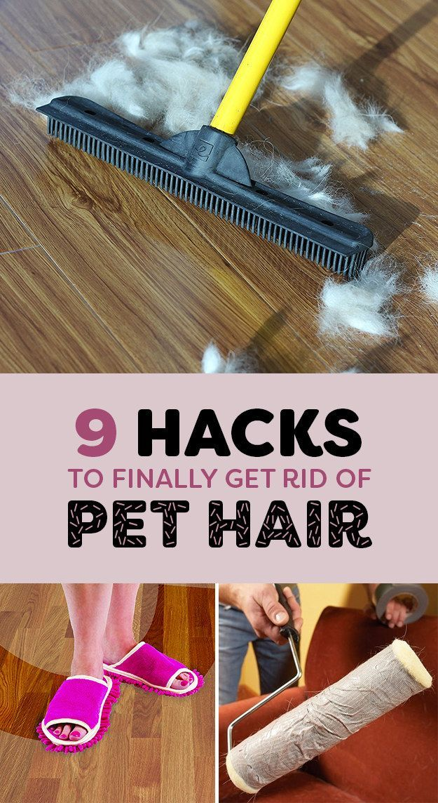 9 Life-Saving Hacks For Removing Pet Hair From Everywhere