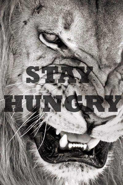 Stay Hungry Stay Humble Disrupts the world