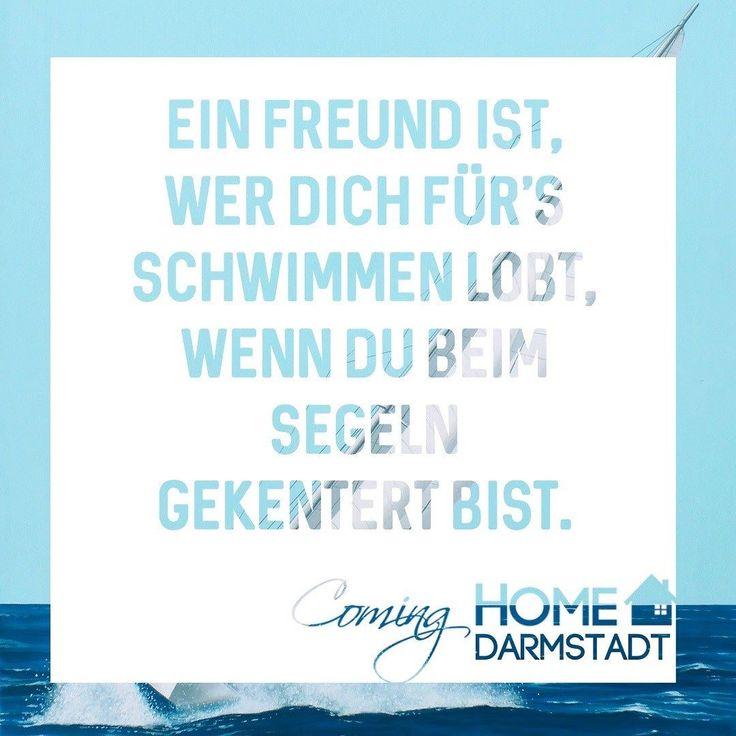 Ein Freund ist wer dich für's Schwimmen lobt wenn du beim Segeln gekentert bist. #freund #freundin #freundinnen #freunde #freundschaft #einfreundist #echtefreunde #echtefreundschaft #schwimmen #segeln #kentern #positiv #fröhlich #spruchdestages #sprüche #cominghome