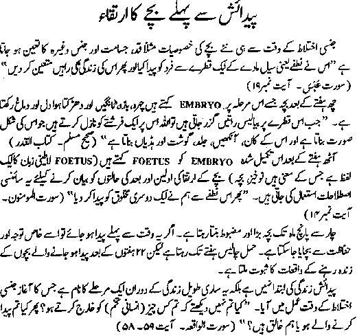 Worksheet For Kindergarten Urdu Urdu Alphabet Worksheets