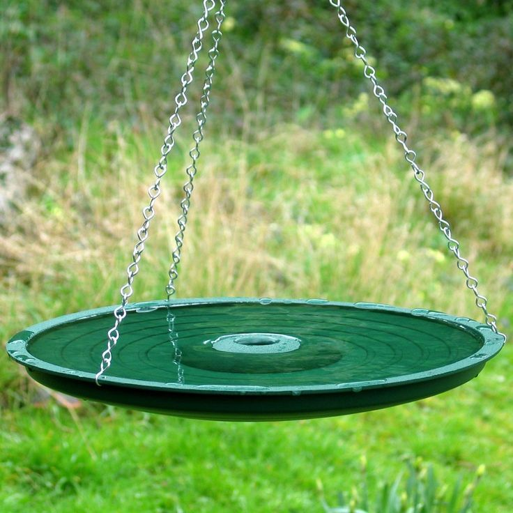 Astounding Bird Bath Wild Birds With Rust Proof Chains Steel Strings For Hanging And Round Green Container With Fountains Also Landscape Ideas, Captivating For Designer Bird Baths: Exterior