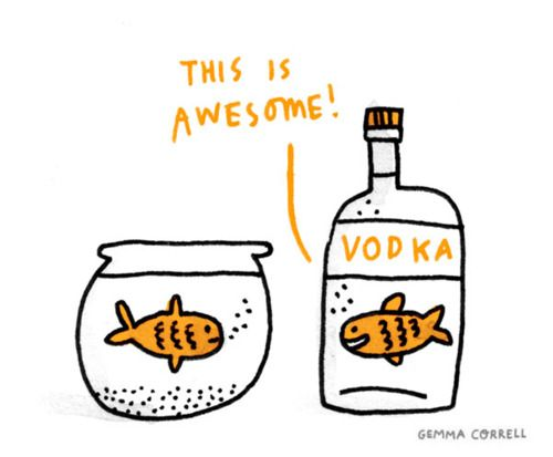 YesLaugh, Awesome, Fish, Funny Stuff, Humor, Things, Smile, Vodka, Gemma Correll