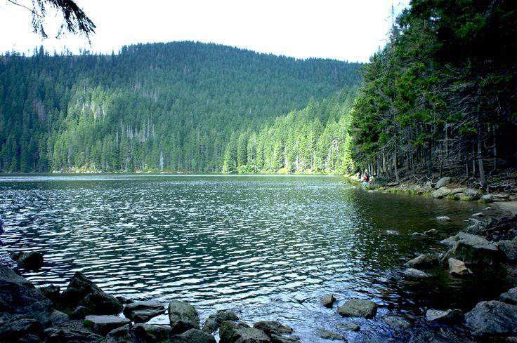 Black lake (Černé jezero - Šumava) - Böhmerwald - Czech republic