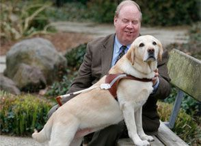 Um, dogs I admire. This yellow Labrador guide dog, Roselle, was with Michael Hingson, her blind companion, on the 78th floor of the W T C North Tower on Sept. 11, 2001. Amid the chaos that ensued when American Airlines Flight 11 was flown into the building, Roselle was able to lead Michael down the flights of stairs, as they'd practiced in fire drills. Once on the ground, Roselle was able to lead not only Michael to safety but many of his sighted coworkers who were blinded by the dust cloud