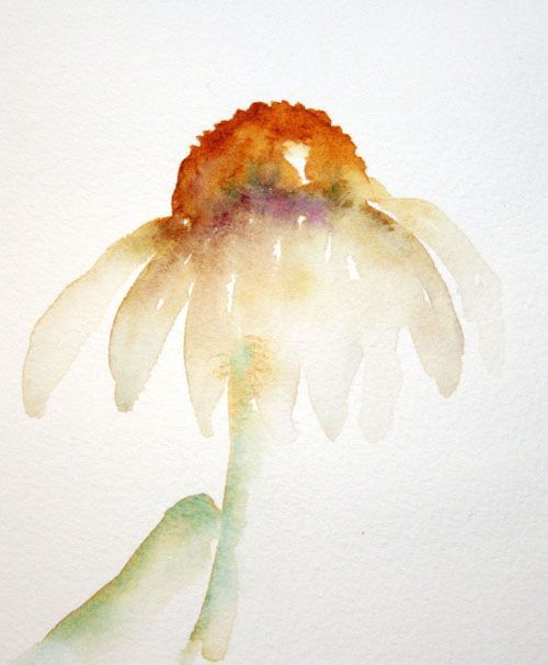 Watercolor Coneflowers with Wet-in-Wet Painting ...... simple step-by-step…