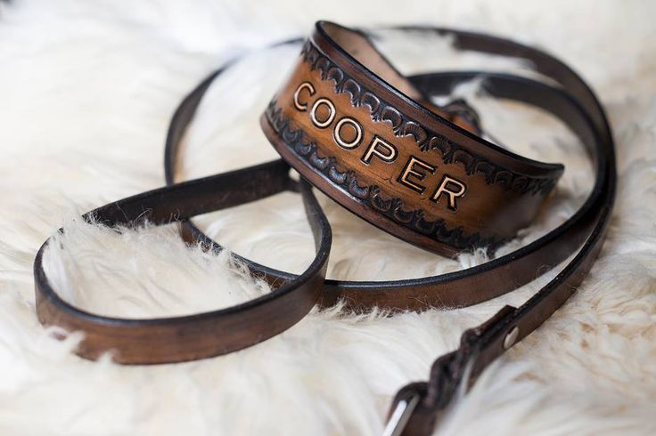 """Ryan Walker """"Punch Leather"""" pet collars, leashes, etc!!"""