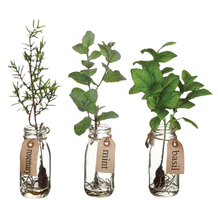 Nice decor idea for herbs in the kitchen.