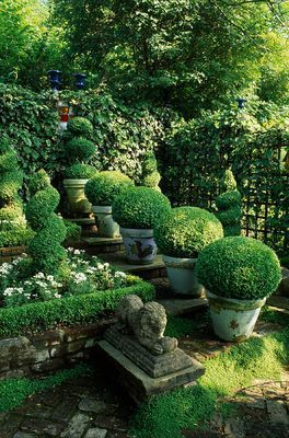 boxwoods in containers, antique stone lion - Jonathan Baillie design, Clive Nichols photography
