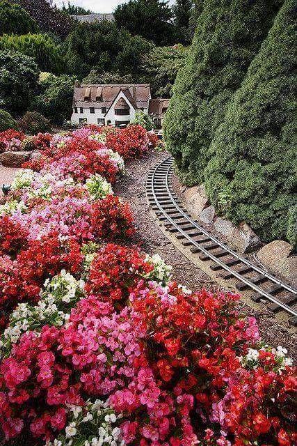 Güzel Manzara ve Tren Yolu .