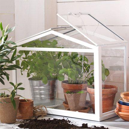 SOCKER plantenkas: Ikea Greenhouses, Socker Plantenkas, Stadstuinieren ...