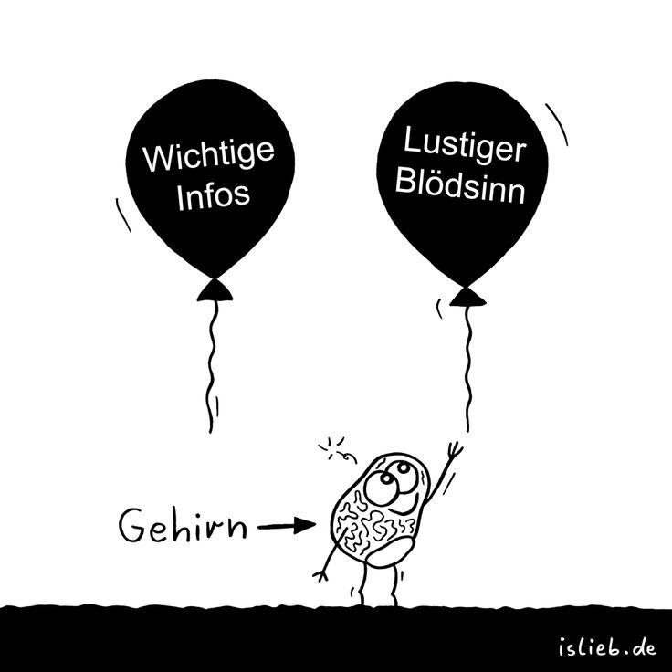 Präferenz | #hirn #gehirn #lustig #blödsinn #ballons #islieb
