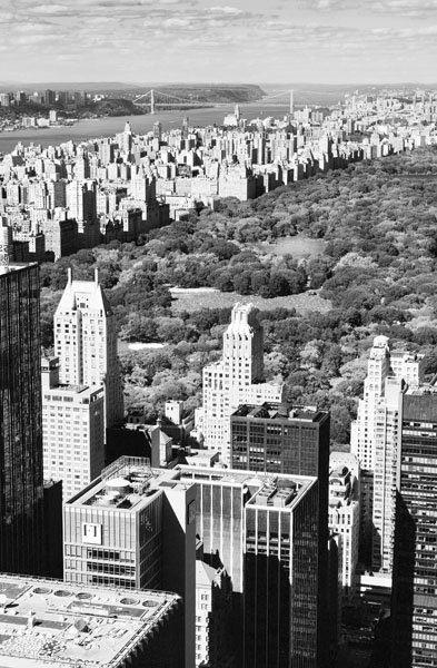 Charl Theodore Photography - New York