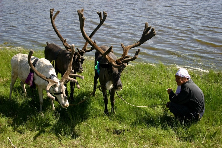 Yakut man with rain deers