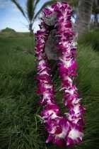 Oahu Lei Greetings at Honolulu International Airport - Hawaii Discount